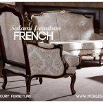 مبل فرانسوی ، مبلمان کلاسییک ، مبل استیل