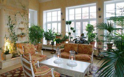 تاثیرات نگهداری از گل و گیاه در منزل