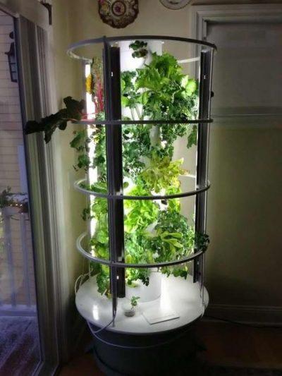 tower-garden-tomato-cage-27-tower-garden-ideas-for-vertical-gardening-homesteading